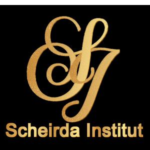 Institut Scheirda